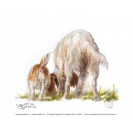 The boys thought they'd found last years bone! - Open Edition Print OPD074